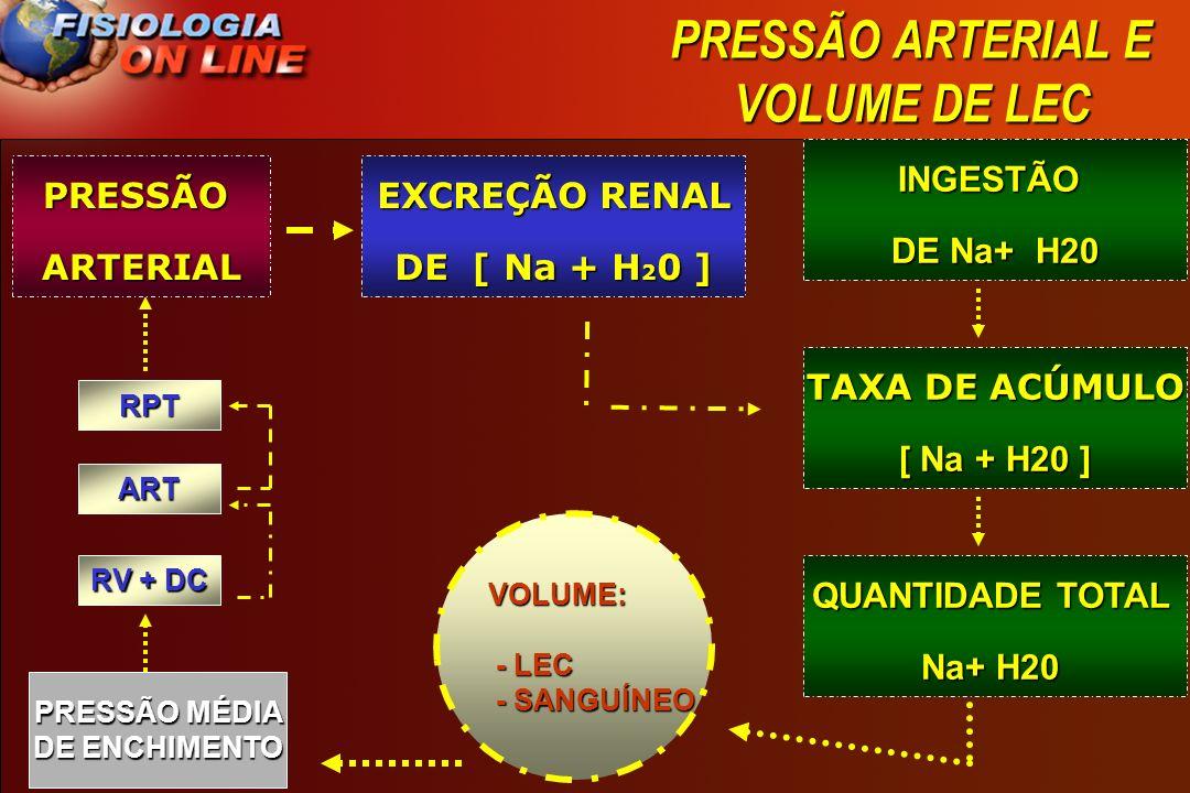 EXCREÇÃO RENAL DE [ Na + H20 ] PRESSÃO MÉDIA DE ENCHIMENTO